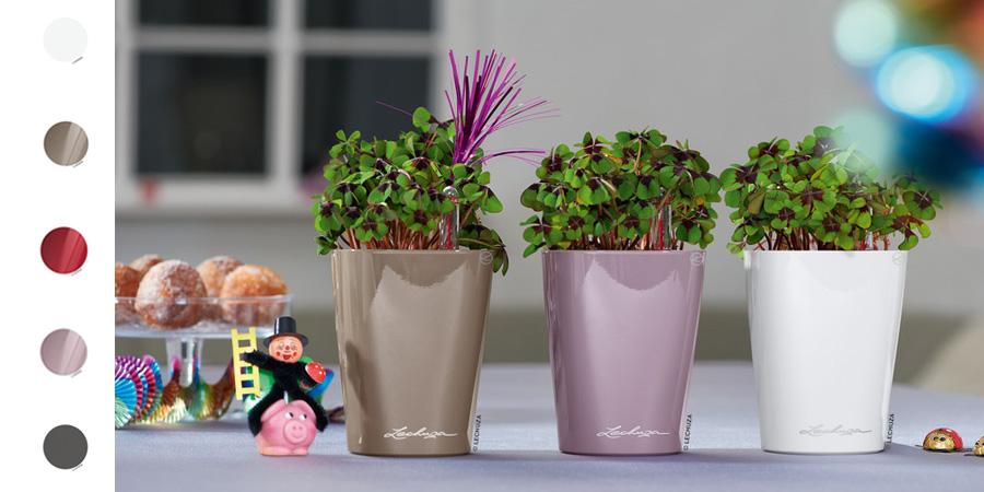 Mini Deltini Sklep Ogród I Dom